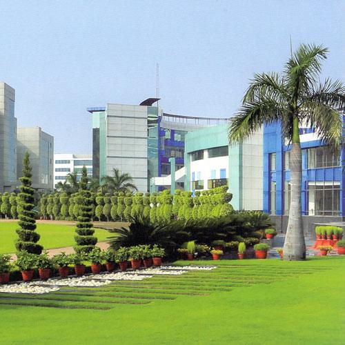 Lotus Valley International School, Noida