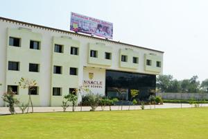 Pinnacle Public School