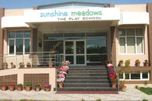 Sunshine Meadows