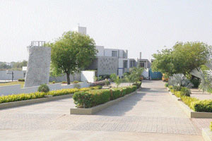 Calorx Olive International School Ahemdabad