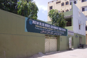 New Blue Birds Grammar High School