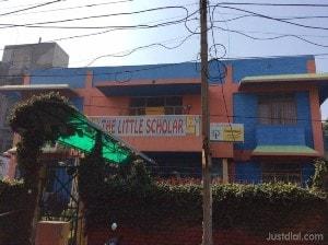 The little scholar play school