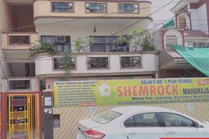 SHEMROCK Maharaja 2