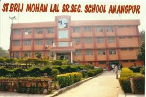 Saint Brijmohan Lal Senior Secondary School